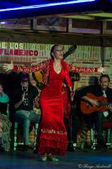 _DSC3423 (Thiago Andreolli Fotografa) Tags: de los estacion flamenco porches tablao estaciondelosporches
