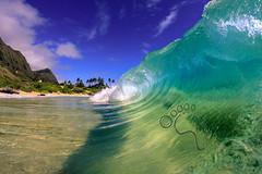 Makapuu morning wm (MICHAEL A SANTOS) Tags: ocean hawaii surf waves oahu reef eastside whitewash makapuu fisheyelens surfphotography morningsession michaelasantos canon7d liquideyewaterhousing rokinon8mmfisheye saintsphotography toesphotos
