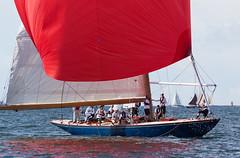 Blue Marlin (Antti Tassberg) Tags: 30 finland boat wooden helsinki sailing yacht mug regatta xxx pint sailingboat bluemarlin uusimaa purjevene purjehdus tuoppi puuvene viaporin 12mr