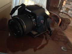 Canon Rebel t3i. (SNAPShots by PJW *Join LNP*) Tags: camera morning wild summer sky sun mist lake fish ontario canada slr castle water beer coffee pool beautiful sunglasses bike fog clouds canon river fun photography eos rebel glasses weird spring scary fishing chair key downtown random awesome ottawa cottage relaxing mountainbike hats machine canoe creepy dew biking stuff lakeshore boating antiques laurier oakley norco chateaux slowmotion t3i selfie fishingrod rapala sowing riseandshine cottagelife boysandtheirtoys herefishyfishy iphone5 follow4follow like4like earlybirdgetsthewarm cofffecup