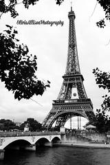 (MyLifeThroughPhotography) Tags: bridge trees bw white black paris france tower nature river photography spring nikon europe eiffel 2014 d40 picmonkey
