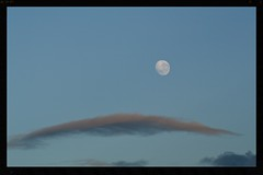 Moon set (Zelda Wynn) Tags: cloud moon west nature weather auckland lenticular troposphere artgalleryofnewsouthwales inspiredbyalfredstieglitz zeldawynnphotography