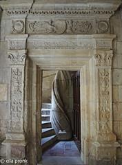 2014-07-23 Tours, La Psalette cloisters, Indre-et-Loire, France DSCN2921 (ellapronkraft.) Tags: france tours indreetloire renaissancestyle flamboyantstyle lapsalettecloisters