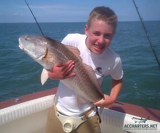 red fish Amelia Island FL