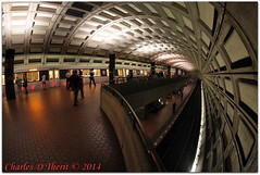 Washington DC METRO Rail Station (ctofcsco) Tags: summer vacation usa public station arlington canon subway eos us dc washington districtofcolumbia unitedstates metro district capital columbia fisheye explore va transportation transit northamerica 5d rosslyn length 15mm f4 iso1600 2014 focal eos5d nationscapital 115s 5dclassic 5dmark1 5dmarki 815mm ef815mmf4lfisheyeusm eos5dclassic ef815mm
