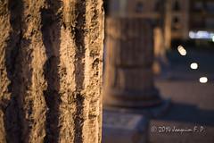 Tarraco romana   Foro de la colonia (Joaquim F. P.) Tags: roma clouds nikon unesco romano ruina cielo nubes turismo historia cultura nube tarragona vita archeological meteo fororomano tarraco arqueologia hispania mediterrani d610 patrimoniomundial mediterrnia patrimoniodelahumanidad imperioromano archeologic romanorum horaazul columnascorintias forolocal forocolonial archaeologicalensembleoftrraco forodelacolonia baslicaromana romanorumvita conjuntoarqueolgicodetarraco frumdelacolnia recintohistrico colonialforumoftarraco siiac valoruniversalexcepcional archaeologicalensembleoftarraco