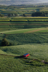 little_red_shed {Explore 9/7/14} #aerial (NetAgra) Tags: ranch morning wisconsin sunrise nikon farm aerial pasture lancaster agriculture tamron 2014 grantcounty beeflivestock