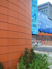 LONDON 1207313353 (Harry Halibut) Tags: blue red green london architecture hospital tile bush royal images panels allrightsreserved cladding londonbuildings londonarchitecture rotrossorougerood imagesoflondon colourbysoftwarelaziness 2014andrewpettigrew