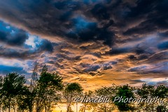 UnstableSunset (limebluphotography) Tags: world travel sunset sky food dog sun white lake tractor storm black flower fall love beach nature beautiful field weather animals clouds sunrise canon lens photography death nikon kiss day child play ride legs image body farm birth hard harvest grow run professional eat adobe hay hatday limeblu vacationweb