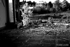 _DSC2196 (Lorenzo Luzi) Tags: allaperto blackandwhite blancoynegro noiretblanc decay abandonedplace abandoned factory lluziph bianconero light luci silhouette broken urban urbanexplorer giocodiluci ombre ombra dark