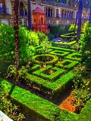 "Travel Series: Spain:  ""The gardens of Alcazar"" (Ken Whytock) Tags: spain seville alcazar gardens maze hedges tropic design"