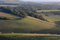 Down to the Sea - Chanctonbury Ring (04) (Malcolm Bull) Tags: 20161016chanctonbury0004edited1web include south downs national park chanctonbury ring