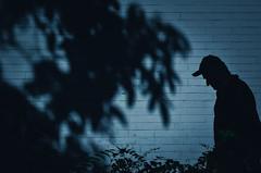 blue nights (Zlatko Vickovic) Tags: street streetphotography color novisad srbija serbia vojvodina zlatko vickovic lightandshadow shadow urban city streetcolor people zlatkovickovicphotography