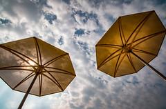 Yellow Umbrellas (rick miller foto) Tags: umbrellas yellow sky clouds beach harbourfront toronto portlands