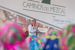 En seis aos, Gobierno de Oaxaca fortalece la produccin del mezcal: Gabino Cu, Oaxaca (GobOax) Tags: oaxaca oaxaqueos gabino cue agosto bienestar progreso 2016 produccion mezcal desarrollo proyectos comercializan mercado actividad style equipamiento estrategias palenques infraestructura certificacin litros bebida ofertaturstica cultura obligaciones industria esperanza compromiso proceso produccin cultivo objetivo entidad fiestas producto visitantes transicin manesanchez paz centrohistrico televisa forotv tvazteca canal22 internet milenio