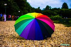 Colours Speak All Language (Vallary Pathak) Tags: kolkata victoriamemorial colors colourful calcutta canon outdoor