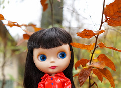 Blythe a Day 10 November 2016 - Trees and Leaves