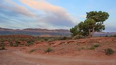 Alba nel deserto / Desert sunrise (adzamba) Tags: 2016 escalante utah unitedstates usa alba canyon desert deserto holeintherockrd peekabooslot sunrise sunset tramonto