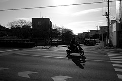 Day 335/366 : Winter Morning (hidesax) Tags: 335366 wintermorning sunlight backlit bike street crossing cityscape wires ageo saitama japan hidesax leica x vario 366project2016 366project 365project