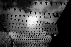 The village garden (hollyjadephoto) Tags: blackandwhite infraredfilm ilfordsfx light village nature 35mm analogue film
