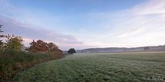 2016-11-01_DSC_4025_web (joerg.z) Tags: fotografie genre herbst jahreszeiten landschaft landschaftsbild landschaftsfoto landschaftsfotografie naturlandschaft nebel umwelt wetter wiese witterung