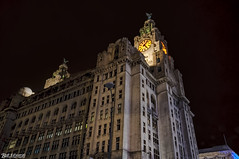 Royal Liver Building Pier Head - 11th December 2016 (Bob Edwards Photography - Picture Liverpool) Tags: royal liver building architecture liverpool merseyside pier head