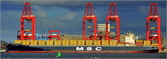 Officially Opened Today (Port of Liverpool)  Liverpool Two Deep Water Container Terminal (Peel Ports) 4th November 2016 (Cassini2008) Tags: liverpooltwodeepwatercontainerterminal peelports rivermersey mscflorida containership shipping msc portofliverpool mediterraneanshippingcompany