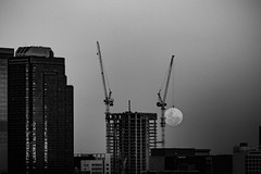 Supermoon (pøjø) Tags: demanderlalune pleinelune lunaire lune satellite cityatnight nightshot night lunático themoon blackandwhite forcedperspective crane cityscape perth australia moonscape supermoon moon superluna luna lunallena
