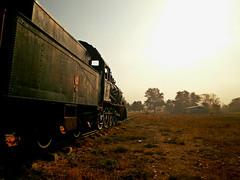 murder on the Orient Express (Sali_Boom) Tags: train fog trip travel orientexpress turkey karaaa rails sun