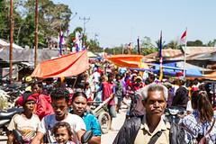 Timor-16