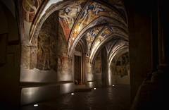 interno chiostro...cloister (GIASTE) Tags: affresco chiostro volta