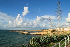 Sep 21: Terrasini Marina Seascape, Sicily (johan.pipet) Tags: flickr sea marina port terrasini sicily flora skyline cactus sunny italy landscape subtropical holiday eu europe palo bartos bartoš canon