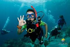 slu_bradh_V55A6458740 (kaufmankronicle) Tags: 2016 diving kidsseacamp stlucia