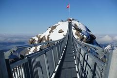Peak Walk (Iris_14) Tags: glacier3000 lesdiablerets peakwalk pontsuspendu passerelle scexrouge alpes alps swissalps vaud suisse switzerland schweiz romandie hngebrcke suspensionbridge
