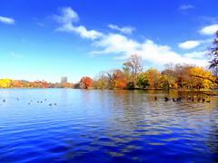 Lake at Fall Panorama (dimaruss34) Tags: newyork brooklyn dmitriyfomenko image fall autumn sky clouds prospectpark reflection foliage