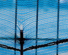 [Blue] (pienw) Tags: hff fence blue outdoor
