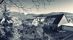 old village (friedrichfrank1966) Tags: village dorf monochrome einfarbig outdoor house forest hill hgel november