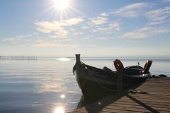 L´albufereta (alexsv92) Tags: agua valencia albufera albufereta barca sol sun mar lago rio river bird boat nude naked girl woman desnudo desnuda plumas cielo sky water sea