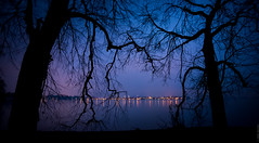 Blue Veins (JayCob L.) Tags: abend air alone blue bodensee breathe connected details dream evening fresh grounded himmel lake lakeconstance light outdoor see silhouette sky tree dreaming lindaubodensee bayern deutschland de