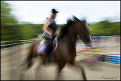 Major Movement (Nodule1) Tags: horses major d200 panning slowshutterspeed 18200f35afvr
