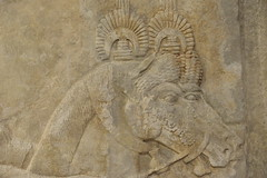 Khorsabad Palace of King Sargon II Receiving Foreign Tribute Groom & Stalion Detail Chicago Oriental Institute Museum (Bruce Allardice) Tags: iraq palace assyria sargonii sargon khorsabad dursharrukin