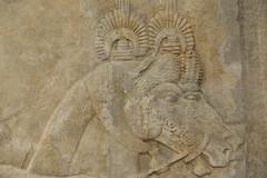 Khorsabad Palace of King Sargon II 722-705 BCE Receiving Foreign Tribute Groom & Stallion Detail Assyrian (Bruce Allardice) Tags: iraq khorsabad dursharrukin assyria sargonii sargon palace babylonia akkad sumer basrelief sargonid