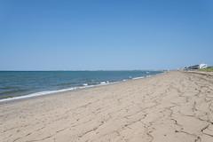 Edge and Curve (Jonathan Lurie) Tags: ocean beach june bay sand provincetown capecod cape cod truro capecodbay