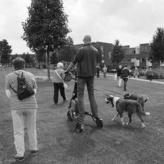 Granny watch (andzwe) Tags: park copyright man monument lumix  panasonic enschede honden driewieler gh4 electrisch twentsewelle andzwe andzwe panasoniclumixdmcgh4 panasonicdmcgh4