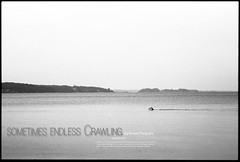 sometimes endless crawling (check4newton) Tags: ocean portrait people film water face analog zeiss person blackwhite aperture open portrt swimmer fjord 28 analogue rodinal schwimmer 120mm endless ilfordpanf swimm nikonfe2 biometar manuellfocus