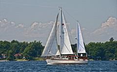 Cabello Del Viento- Nauticat 38 (cj howitt) Tags: ontario sailboat thegap kingston lakeontario
