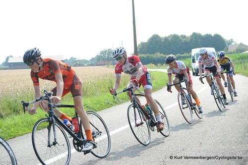 Geel Oosterlo  (197)