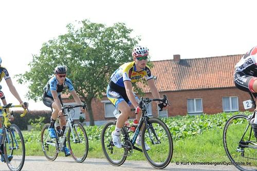 Geel Oosterlo  (173)