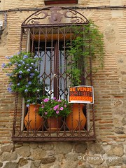 Toledo (Graa Vargas) Tags: espaa flower window spain espanha toledo graavargas 2014graavargasallrightsreserved 20506041114