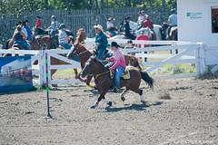 DSC_0109-1 (Glenn Fullum) Tags: nikon barrels hose chevaux baril gymkhana d5200